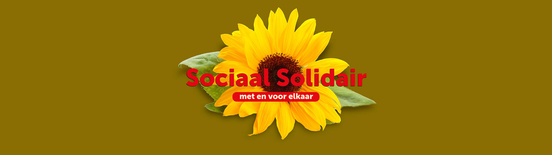 Stichting Sociaal Solidair