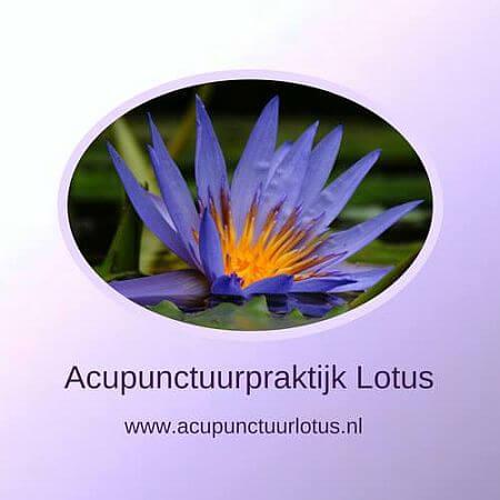 Acupunctuur Lotus